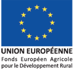 logo union europeen